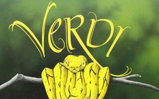 Verdi, un libro para niños que se aman como son