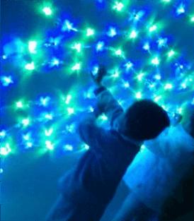 guia_constelaciones9