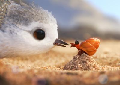 Disfruta con los niños Piper, el corto de Pixar que ganó el Oscar 2017