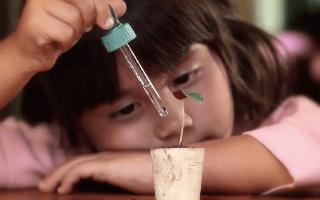 Más contenidos de Maguaré en internet para hablarle a los niños sobre sus derechos