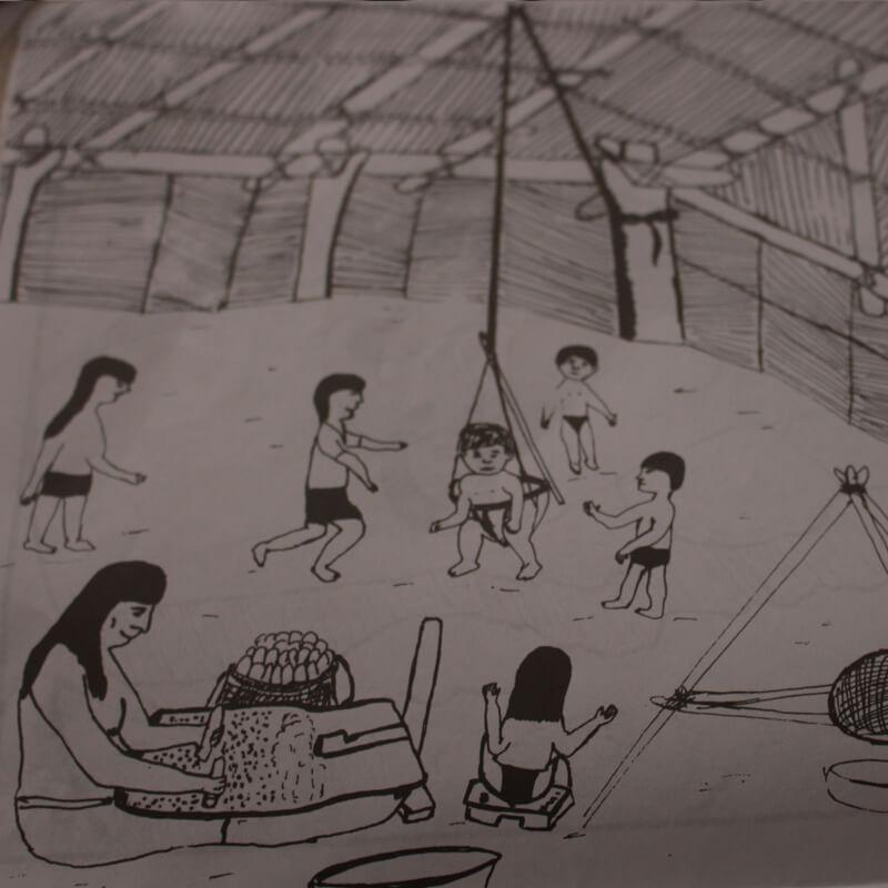 Jūedova Pamiva Una Experiencia Sobre Los Indígenas Cubeo En El Río