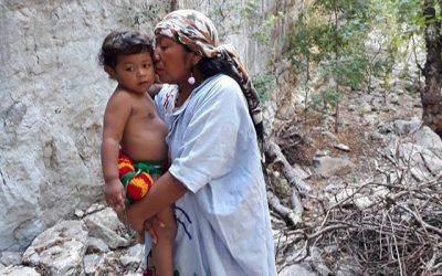 Entre la mama y el teküin, una experiencia sobre lactancia y lengua